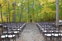 The Cathedral of Trees / Ceremony Location