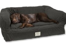 Dog Beds / Great ideas for beautiful dog beds!