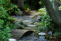 Exterior Design / Landscaping / by Shelli Franks
