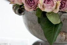 De jolies compositions de fleurs