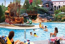 Cheap Hotels in Disneyland / Get hotel listing located within walking distance of Disneyland attractions, live concerts stadium, restaurant, shopping city and nightlife with its fully loaded information including price details, facilities.