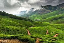 7 Days Kerala Holiday package for Rs 16,000. / http://travelgowell.in/kerala-holidays/7-days-kerala-tour-packages/munnar-thekkady-alappy-kovalam-kanyakumari.html. 7 Days Kerala Tour package  for Rs 16,000.covering Munnar,Thekkady,Alappy,Kovalam and Kanyakumari.