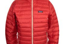 Patagonia / The outdoor experts in clothing.