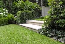Ideas for garden remodel /  garden ideas