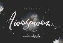 Typeface/Typography