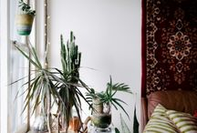 IKEA Furniture Spotting / #IKEAFurnitureSpotting / by J Taylor Paravantes
