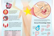 Sexual Body Parts