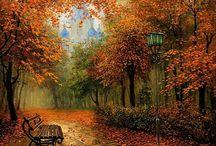 Осень. The autumn. / Осенние пейзажи. Autumn landscapes.