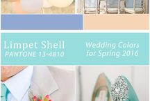 What's Trending 2016 / 2016 Bridal Trends
