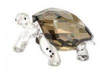 ornamental turtles