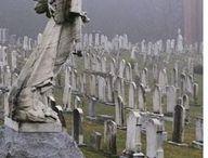 Cemeteries / by Mal Sevam
