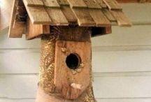 fågelholk mm