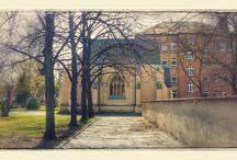 Bilder Friedhöfe