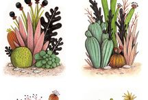 Illustration Plants