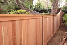 Landscaping and Fence Ideas
