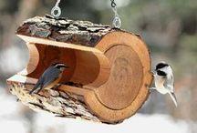 Casinhas e Comedouros para Pássaros