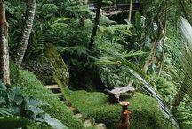 Bali / Travel