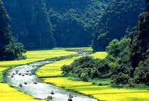 Vietnam Travel Guide / Vietnam Travel Guide - All Pictures and Articles related to Vietnam will be in here / by ReisetippsBlog.de