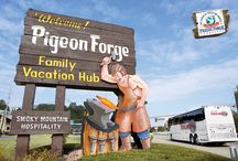 Pigeon Forge Pin2Win / by Stephanie Morel