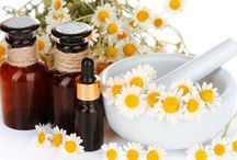 essential oils for asthma and mold