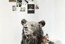 / BEAR