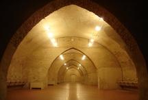 Scuderie del Castello Visconteo, Pavia