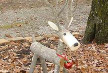 Deer in the front yard
