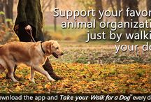 Support K-9 Lifesavers