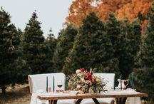 Arkansas Fall & Winter Weddings