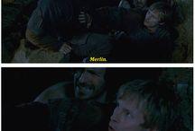 Majestic Merlin