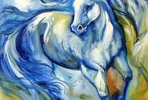 CAVALLI / cavalli in movimento