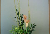 centron de flores