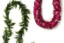Graduation Leis / Graduations leis of all sorts! Flower leis, ti leaf leis, money leis, kukui nut leis in school colors and even candy and fortune cookie leis!