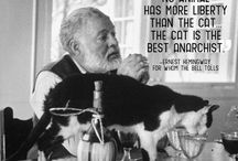 famous and cats
