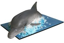 Dolphin cake 3D
