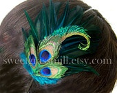 Peacock Stuff :) / by Julie Corsby