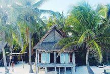 ~♡~Island life~♡~