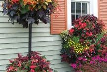 Basket Columns / Basket Columns for Large and Small pots convert pots into stunning 2-level floral displays on your patio, poolside, porch or deck using our Basic Basket Planters.