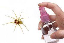 Contre insectes divers