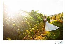 vineyardcwedding
