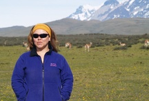 My travel to Patagonian Chilean