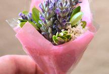 Decoração Floral / Ideias fofas e charmosas