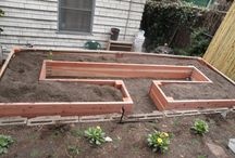 Extreme Backyard Makeover / by Audre Taylor