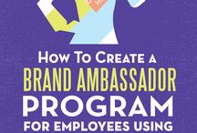 Social Media - Influencer & Ambassador Programs