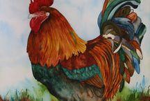 høner og haner.