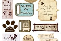 TAGS ANIMAUX COMPAGNIE