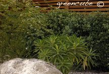 easy maintenance garden