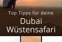 Vereinigte Arabische Emirate / Reisetipps zu Vereinigte Arabische Emirate