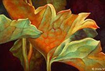 Vegetables:pastel,oil paintings ♫ ♪ ♥●•٠·˙ ☯