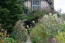 Trädgård och hus